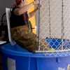 Lt. Raro Getting Dunked