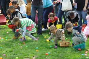 Easter Egg Pic